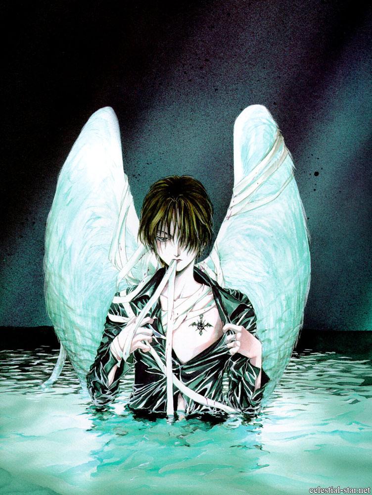 Angel Cage image by Kaori Yuki