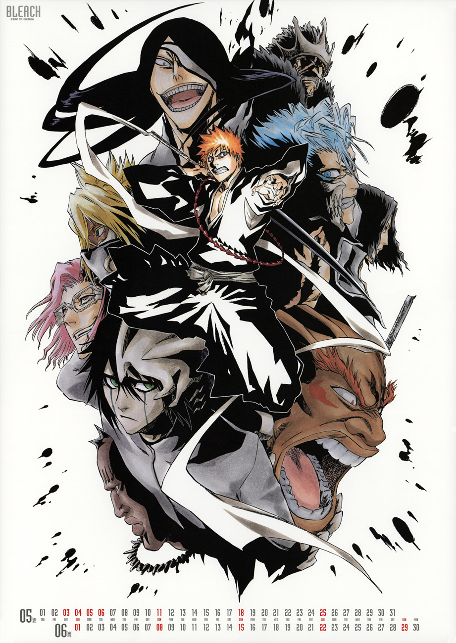Bleach 2008 calendar image by Tite Kubo