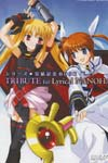 Magical Girl Lyrical Nanoha image #5916