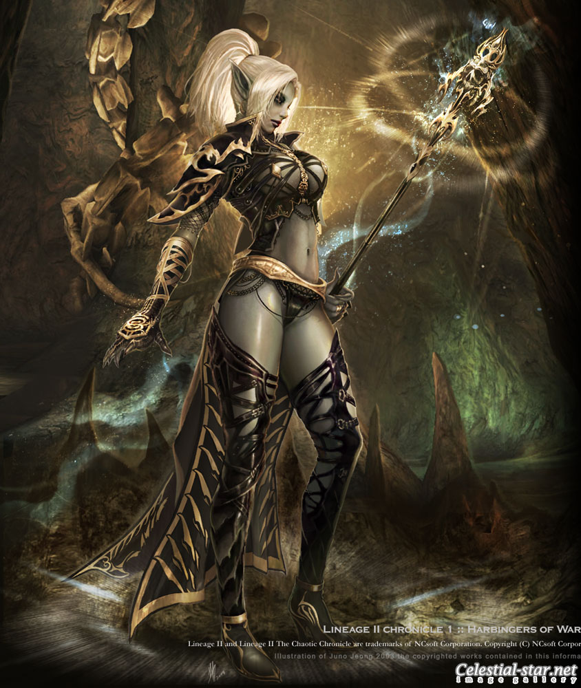 Lineage II image by NCsoft Corporation